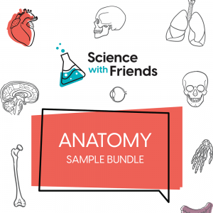 Learning with Friends Anatomy Bundle Sample